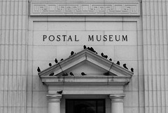Popular Spot (ep_jhu) Tags: canon dc pigeons pjaros pajaros dcist palomas postalmuseum alphabetgame bwmondays
