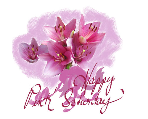 happy-pink-saturdaypink-day-lilies-sign