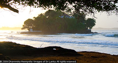 096 (Dhammika Heenpella / Images of Sri Lanka) Tags: pictures travel trees vacation holiday travelling tourism beach nature vertical landscape outdoors island photography coast interesting sand scenery asia day waves photos shots outdoor south indianocean fulllength wave tourist southern coastal snaps shore tropical watersedge srilanka ceylon southeast lk scape islet attraction srilankan downsouth stockphoto captures holidaying scenicbeauty traveldestinations weligama locallandmark placesofinterest photosof placeofinterest nonurbanscene stockimagery indiansubcontinent tropicalclimate taprobane southernprovince taprobaneisland dhammikaheenpella ganduwa theimagesofsrilanka heenpalla visitsrilanka2011