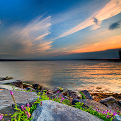 intermission ([Adam Baker]) Tags: flowers sunset summer lake ny reflection clouds canon square rocks angle streak wide ps explore frontpage cayuga hdr 1740l photomatix digitalblending adambaker vertorama 5dmarkii