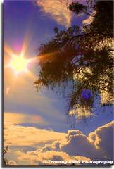 Destello de sol (trovany) Tags: sol azul atardecer cielo nubes rbol resplandor yahuiche
