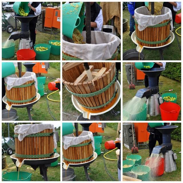 Apfelproduktion