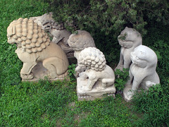Foo Dog family Forbidden City, Beijing (thewamphyri) Tags: china beijing lion  prc  forbiddencity imperialpalace forbiddenpalace peking  peoplesrepublicofchina palacemuseum fudog  foodog theforbiddencity bijng megacity  foolion guardianlion fulion  over200views formerpalace zjinchng chineseguardianlion ggng ggngbwyan