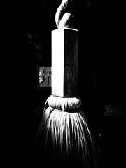 晩夏と影 ~ Late summer and Shadow (20090906_akitsu_14) (pqw93ct) Tags: shadow summer bw white black monochrome japan shrine late saitama 神社 ricoh tokorozawa 埼玉 影 モノクロ 白黒 所沢 akitsu 晩夏 gx200 秋津