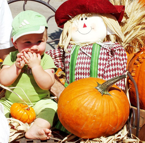 toddler in pumpkin patch with friendly happy scarecrow