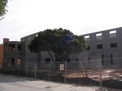 New Dorm Construction #142 (Mr. Jincks) Tags: construction dorm dormitory wfu residencehall wakeforestuniversity winstonsalemnc