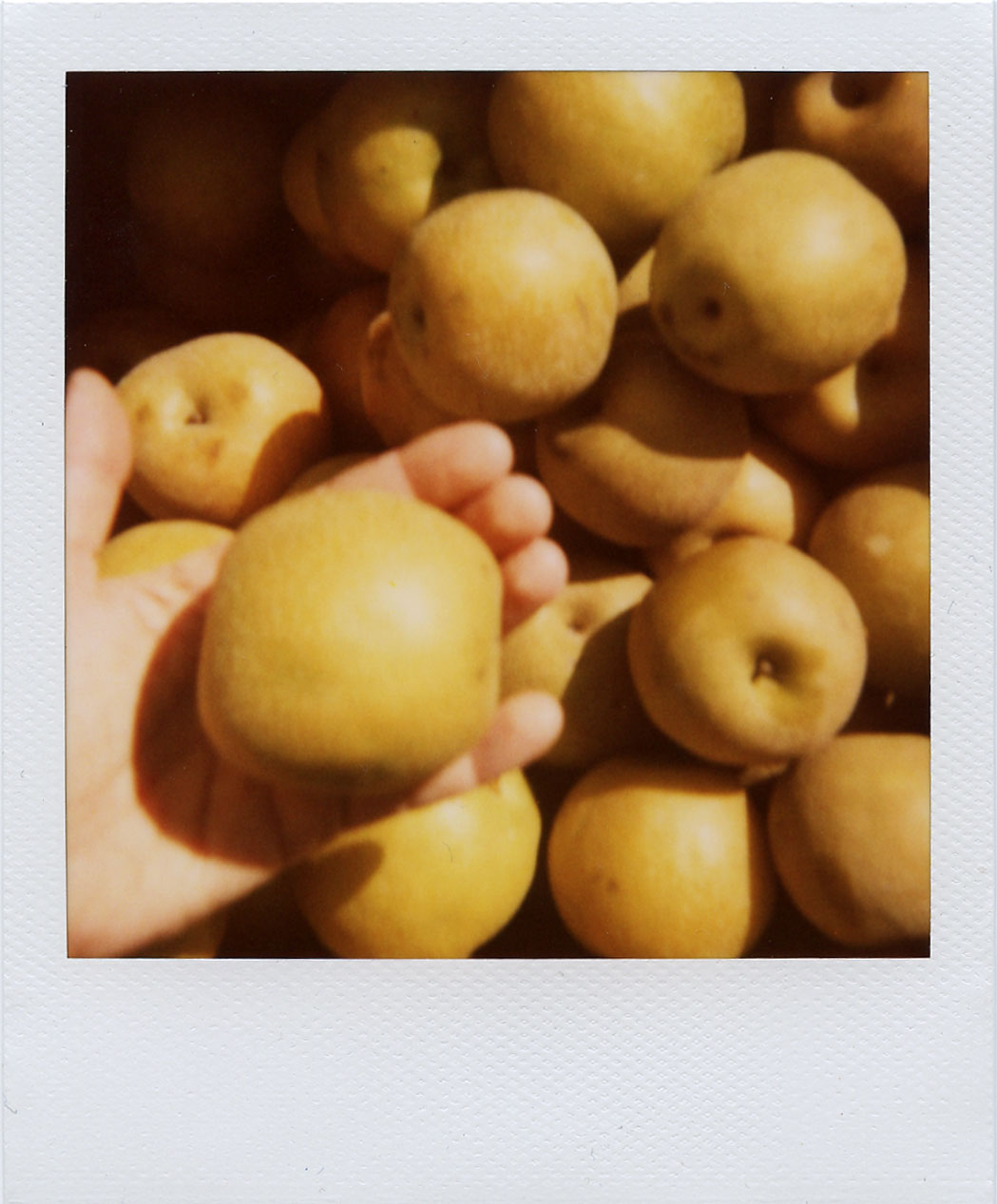 pola: apples