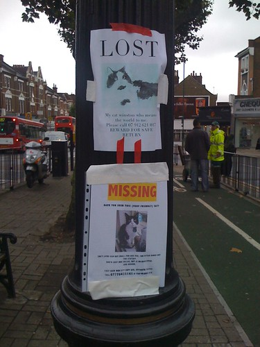 Lost + Missing by Tom T.