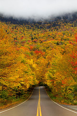 Vermont, Smugglers Notch State Park (kevin mcneal) Tags: autumn vermont seasons fallcolor smugglersnotch