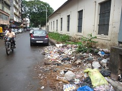 CCP's new project: Maize crop and composting on pavements (joegoaukdirtypanjim3) Tags: garbage pavement goa crop rubbish maize panjim joegoauk