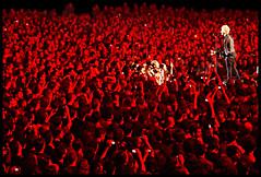 Red Roses for Billie Joe (RiminiPrincess) Tags: music concert niceshot live joe bologna mm 1001nights armstrong greenday billie ohhh musictomyeyes beautifulshot photographicexcellence mywinners anythingyoulike peaceaward futurshow angelaward diamondstars theperfectphotographer thebestshot fromheartawardsgroup 469photographer flickrballoonaward grouptripod extendelement doubledragonawards artofimages zaphirogroup fotosconestilonaturalezaviva excaliburaward
