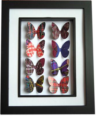 Tartan_Butterflies