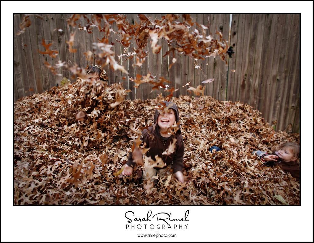 leaf play 09