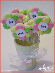 Royal Iced Cookie bouquet -      (Maya Ellis) Tags: flower colorful cookie bouquet   fondant  royalicing   sugarpaste        btter