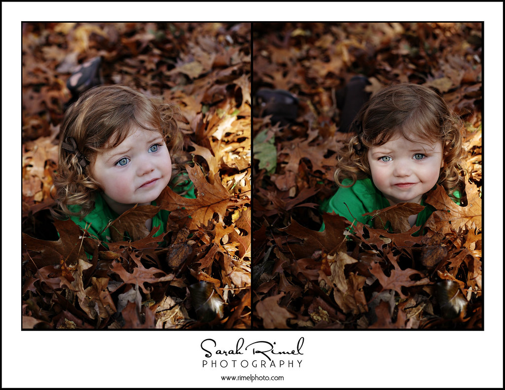leaf fun 28