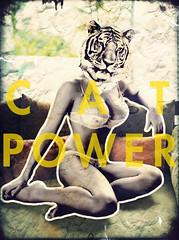 Poder Gato