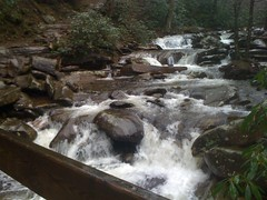 Creek on Chimney Tops Trail 2