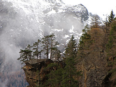 Living on the edge (RainerSchuetz) Tags: trees winter mist snow fog clouds lyrics canyon aerosmith abyss gulch flickrrocks artofimages bestcapturesaoi