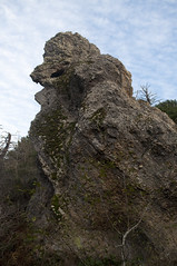 Bird-like rock