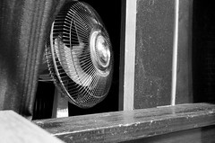 fan (teh hack) Tags: summer bw screen nb heat cooling explored fornogoodreason