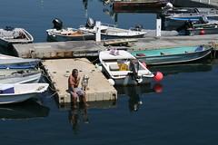 Dog on the Dock (Read2me) Tags: dock pier ptown boats yourock1stplace thechallengefactory challengeyouwinner achallengeforyouwinner thumbsupwinner anythinggoeschallengewinner superherochallengewinner pregamewinner gamewinner remindsyouofasong agcgwinner perpetual perpetualchallengewinner