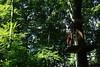 IMGP3275 (strongwater) Tags: dave jan bo velbert klettern witte klimmen svenja ilka luza strongwater waldkletterpark