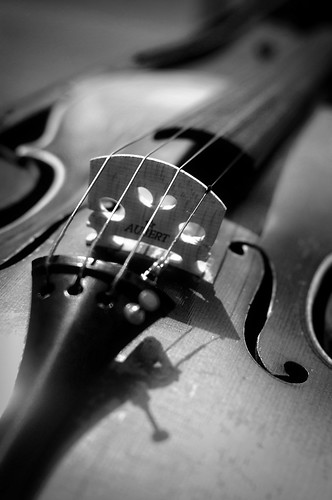 Violin in b&w