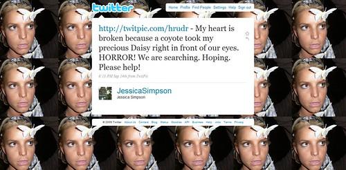 Jessica tweets