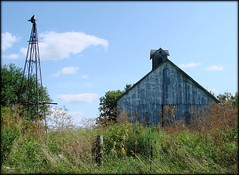 Weed Farm (MEaves) Tags: wood old abandoned barn neglect rural illinois midwest sony rustic faded forgotten cupola weathered decayed antiquity ruralamerica h5 sonyh5 farmstructure
