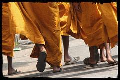 Towards Dikshabhumi (Ameet...) Tags: yellow canon walking flickr buddha buddhist religion buddhism estrellas nagpur orangecity dikshabhumi 40d unseenindia
