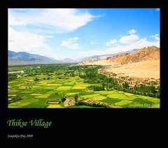 Thikse Village, Ladakh, Jammu & Kashmir, India - 21.08.09 (Candle Tree) Tags: india distillery ladakh thiksey jammukashmir karakoramrange mountaindesert transhimalaya colddesert thiksegompa ladakhlandscape ladakhrange barleyfields dragondaggerphoto highaltitudedesert magicunicornverybest sailsevenseas agricultureinladakh thiksevillage