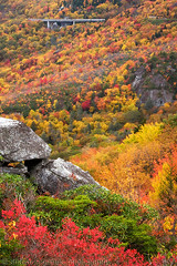 Rough Ridge (- Shawn -) Tags: autumn fall northcarolina blueridgemountains grandfathermountain linncoveviaduct