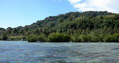 Weno Island, Chuuk (mattk1979) Tags: ocean church island pacific mangrove weno chuuk federatedstatesofmicronesia truklagoon