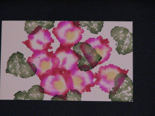 ai violets 016