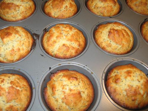 Fresh-baked lemon poppy seed muffins