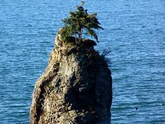 Slahkayulsh (Pierre♪ à ♪VanCouver) Tags: canada rock vancouver britishcolumbia stanleypark siwashrock カナダ estremità sofarsocute バックベー