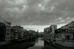 Una tarda d'hivern (Lluís Vicens (sense temps per a res!)) Tags: bw sony girona bn ponts a100 riu núvols hivern tarda onyar gavines