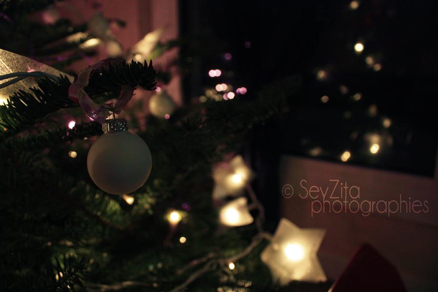 Noël 2009 #12