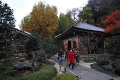 Tokyo 2009 - 鎌倉 - 長谷寺(10)