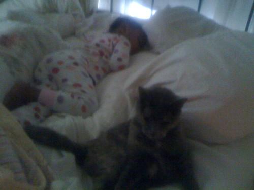 may 13, 2011, 8am