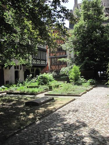 Cathedral Garden: Strasbourg