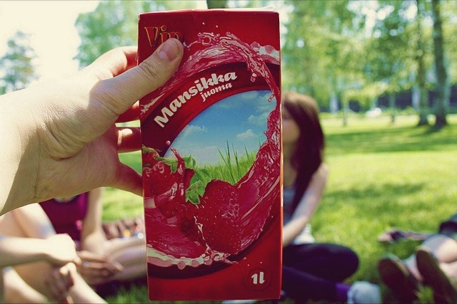 picnic 026