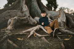 roots (demandaj) Tags: nikon 35mm d4 14 anaheim socal ca outdoor tree roots kids momlife boys