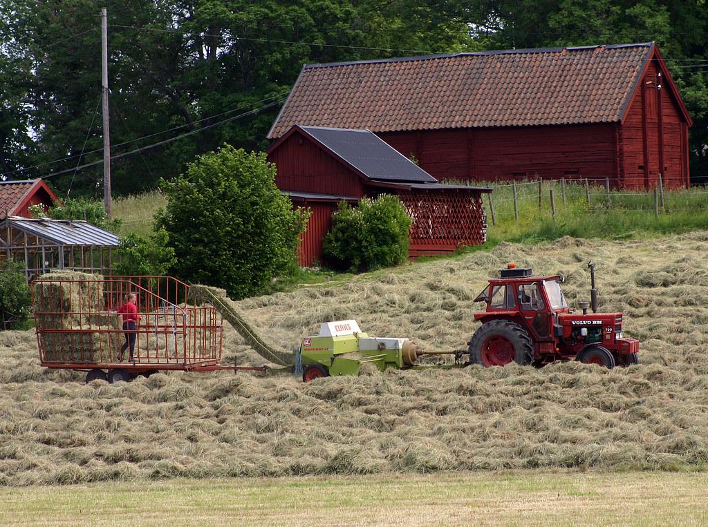 Hay Harvesting