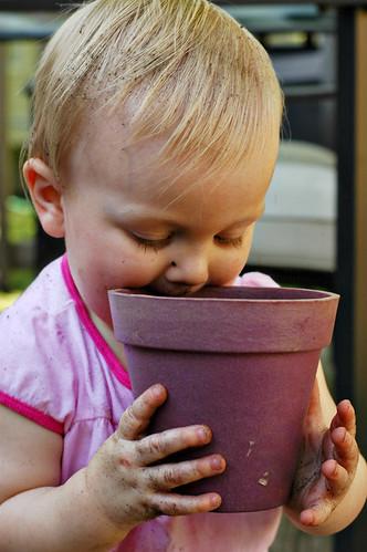 11-months-flower-pot
