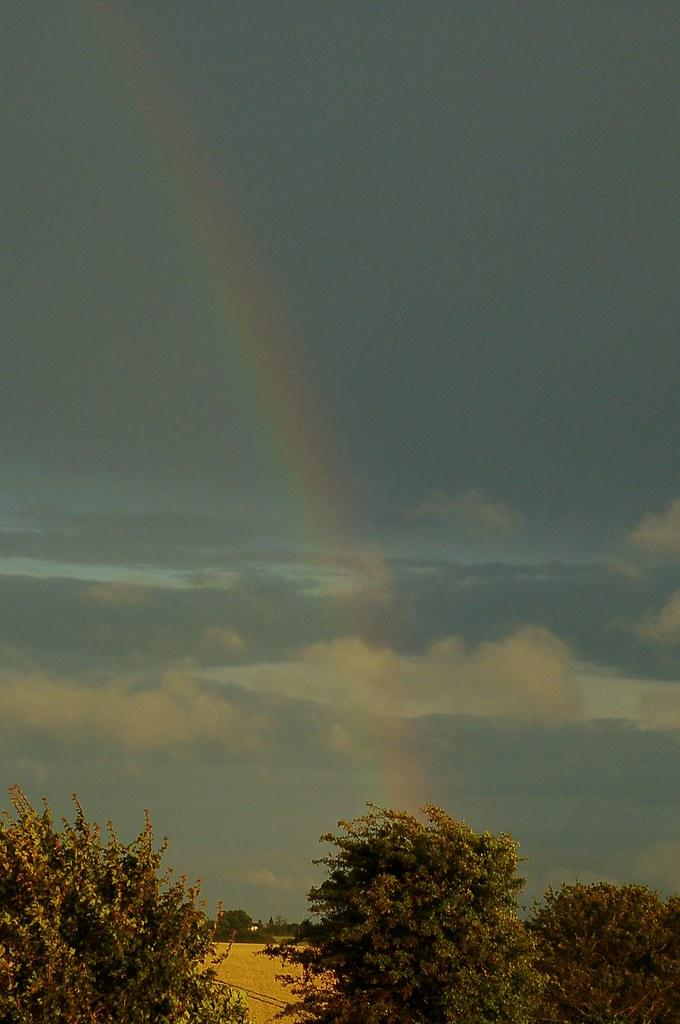 188/365 Rainbow