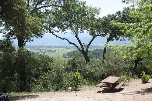 View of the Napa Valley from Rutherford Winery