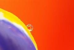 Monde Parallle (Aliocha Photographie) Tags: iris orange macro art water fleur eau violet sigma drop moderne bleu reflet mauve sur abstraction 105 monde lys deau goutte 250 proxy abstrait pourpre raynox minimalisme bonnette d80 parallle