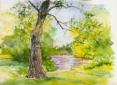 Willow to the River (Artist Naturalist-Mike Sherman) Tags: art watercolor painting michigan transparent visual mtpleasant pleinair islandpark kunstplatzlinternational