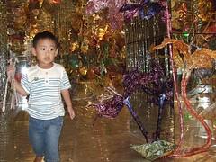2008-0829-11.jpg